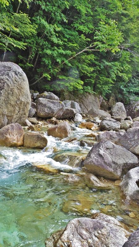 廻り目平の渓流
