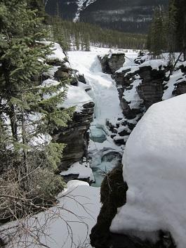 Jasper spring 2011