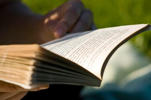 Blueprint, Territory, Language, Portal, Singular Lens: 5 Ways to Read as a Writer