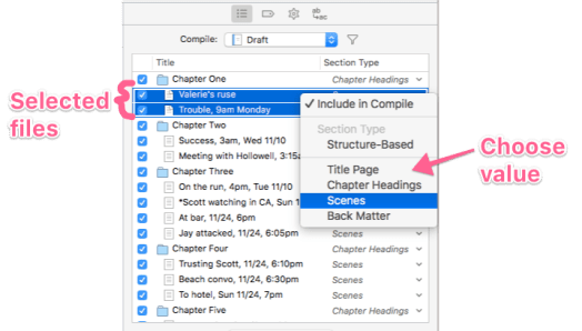 Contents pane in compile showing how to assign a section type to multiple files