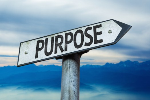 Purpose: The Missing Link Between Characters' Motives, and Depth