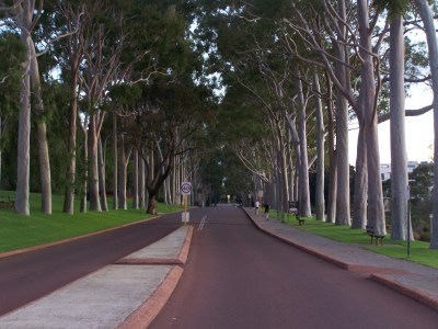 Something about Kings Park and McGillivray Oval