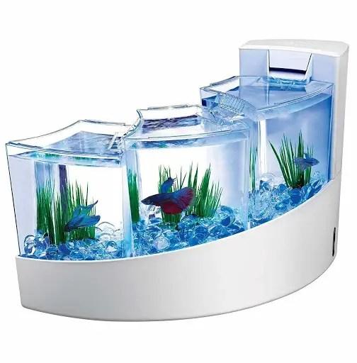 aquarium software