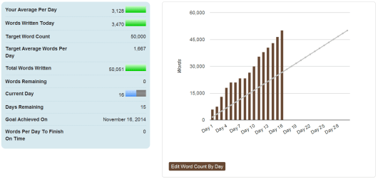 NaNoWriMo2014 - Success