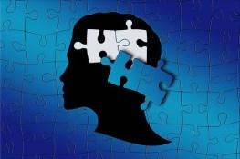 inner puzzle