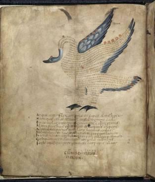 medieval bird text