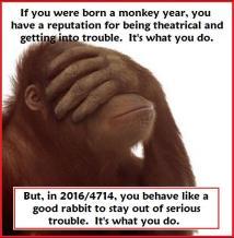chinesenewyear-2016-4714-esurance-warning_dontlookmonkey-ap-4J