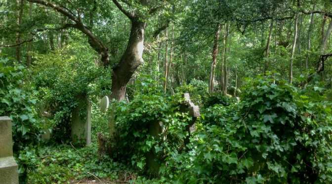 Breath and Memory in Highgate Cemetery