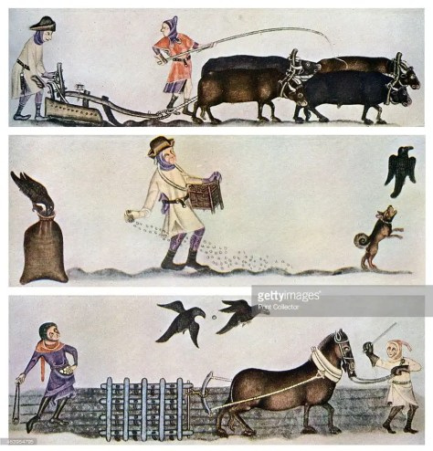 Ploughing, sowing, and harrowing, c1300-1340, (c1900-1920). Scenes from the Luttrell Psalter. A print from Art History and Literature Illustrations, by Jessie Noakes, Virtue and Co, (London, c1900-1920).