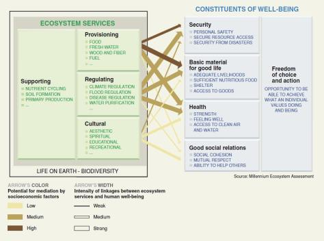 ecosystem-services-and-wellbeing-wri