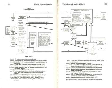 Antonovsky -- The Salutogenic Model