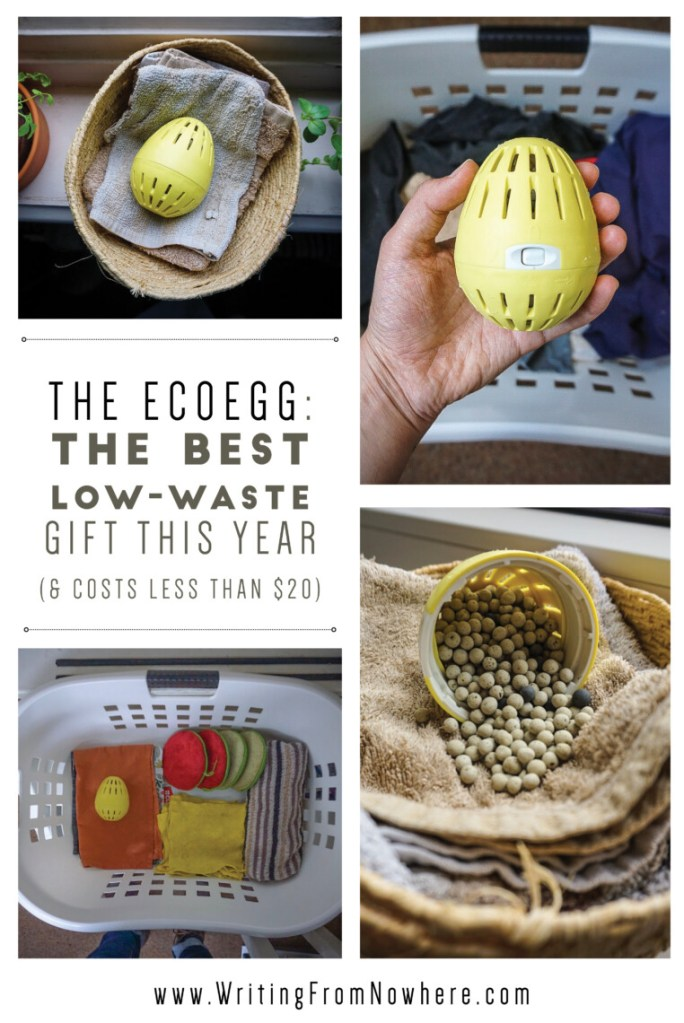 EcoEgg Review _Writing From Nowhere