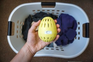 EcoEgg Review_Writing From Nowhere_Sustainable Living