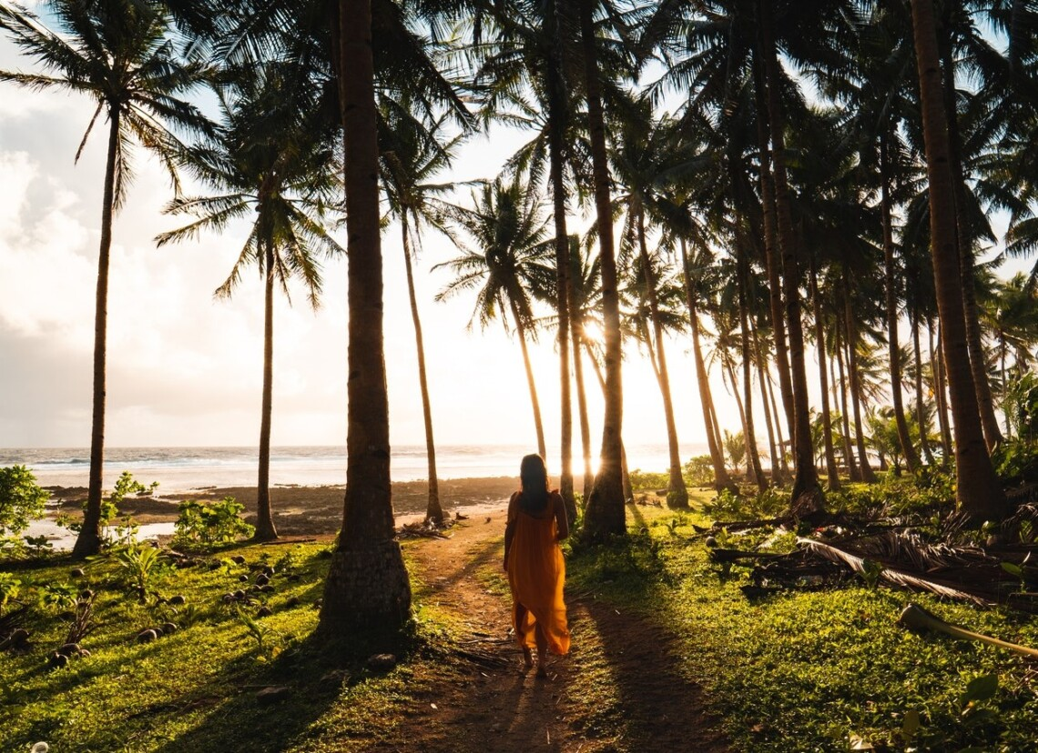 A woman in a dress walks down a path between palm trees towards a sunset. Her back is facing the camera