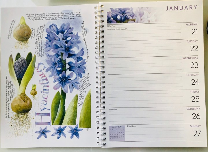 Hope – On a Blank Page – Day 21