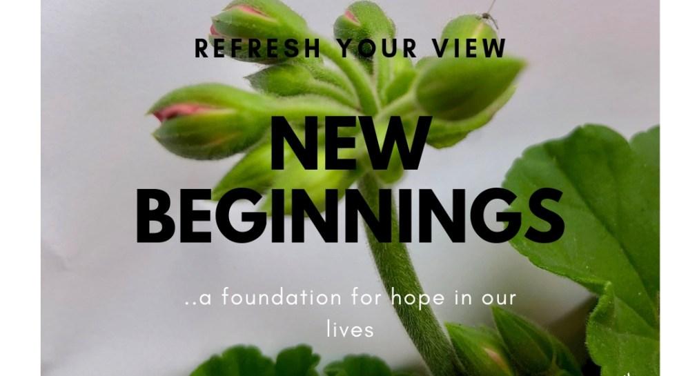 Geranium blossom signifying new beginnings