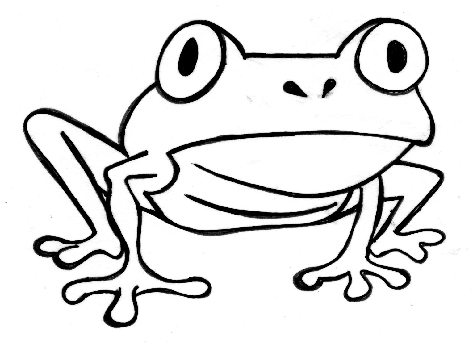Cute Tree Frog Drawings