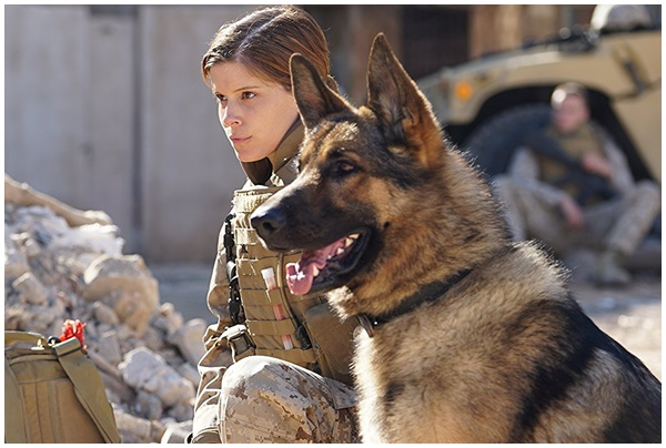 Movie About Megan And Her Military Dog