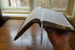 Flexible binding but not a pliable cover