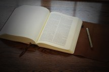Esv Journaling Bible Interleaved Edition In Natural Brown