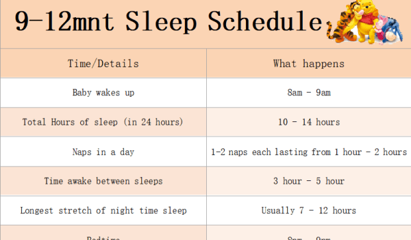 newborn baby sleep schedule 9-12 months