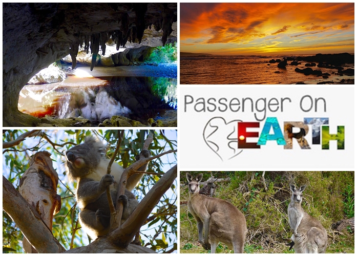 Travel Blog Passenger on Earth