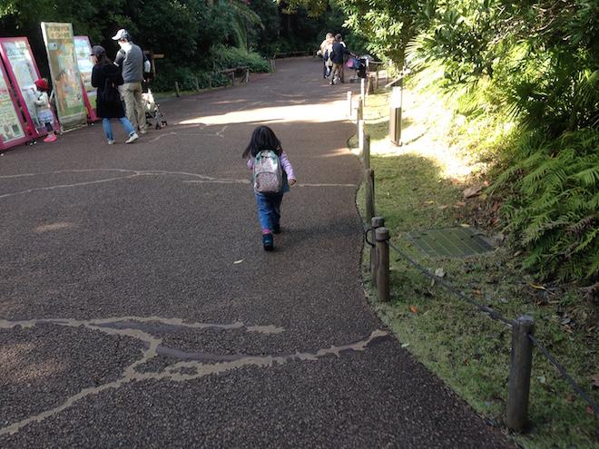zoorasia-yokohama-zoological-gardens10