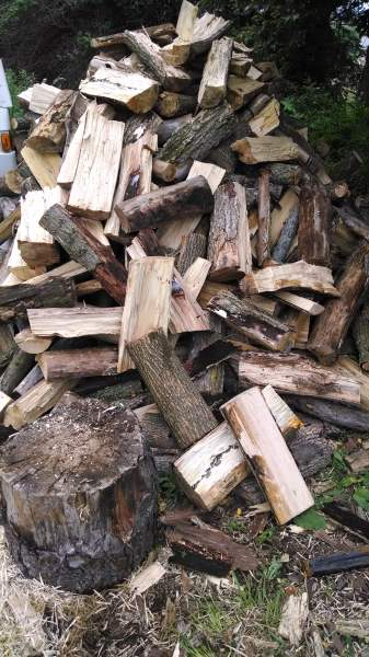 Next winter's firewood stack is growing