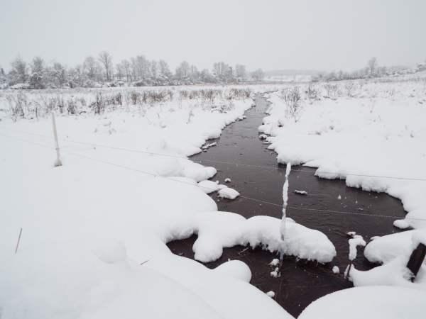 stream running through the snow