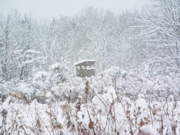 deer blind in snow