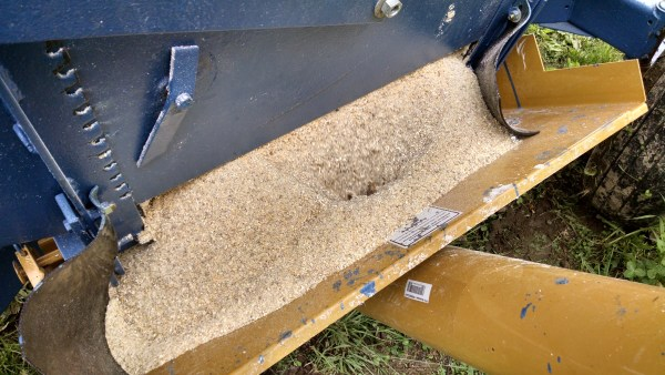 Grain flowing out of the wagon into the auger hopper.  I might add a plywood extension to the hopper to prevent overflow problems