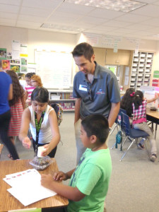STEM summer school 2015 (4)