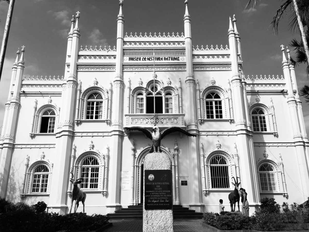 the museo de historia natural in mozambique