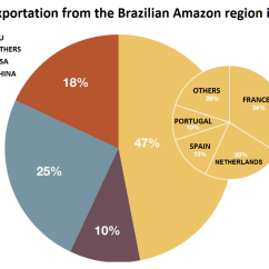 Amazon Rainforest Layers Diagram Combination Switch And Outlet Wiring The Gallery For Gt Deforestation Graph