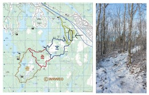 ATV tracks on The Bluff Trail on the  west side of Pot lake on the first loop, Jan 10, 2015