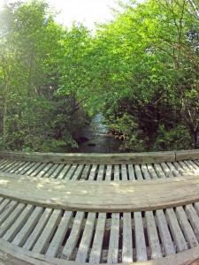 Bridge over Woodens River, Joshua Slocum Trail, Sep 16, 2015. (Photos by David P)