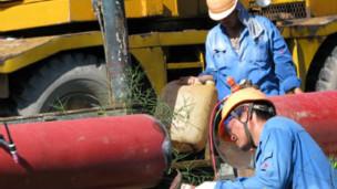 Công nhân Trung Quốc làm việc tại nhà máy đạm Cà Mau