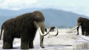Impresión artística de una manada mamuts.