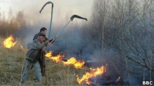 Bosques Chernobyl