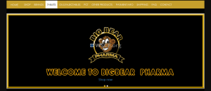 Bigbearpharma.co Internet DrugStore