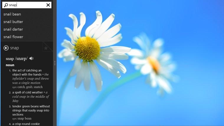 http://apps.microsoft.com/windows/en-us/app/wordbook/386b8452-5346-4c72-850b-fcf734dd3166