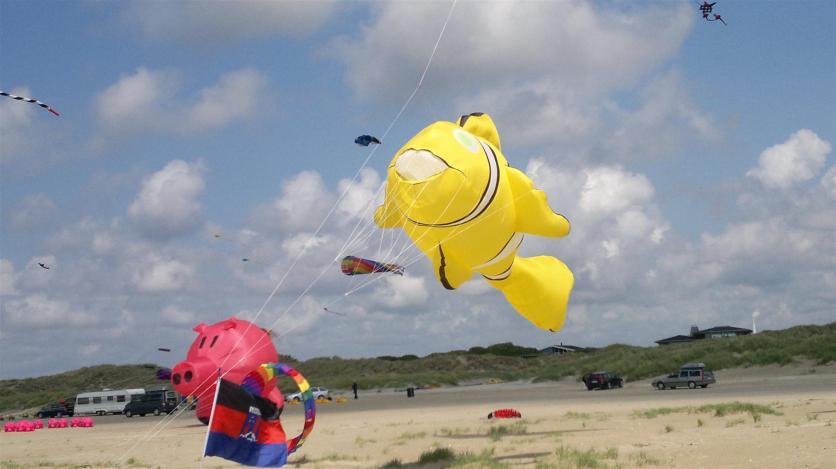 Wurde der Clownfisch zu heiß gebadet oder warum hat der seine Farbe verloren? ;-)