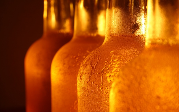 cold_beer_bottles-t3