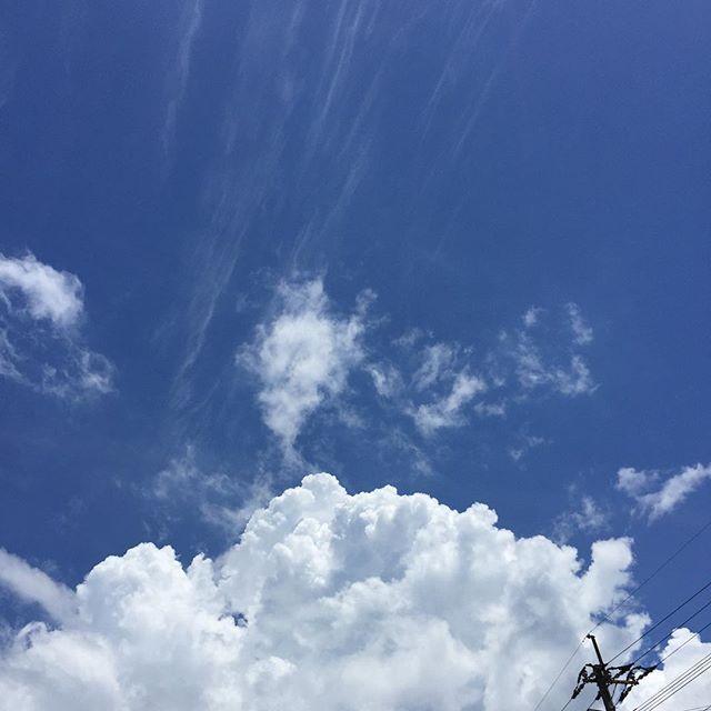 見事な入道雲。ひと雨欲しいところです。もう、シエスタ導入するべきですね。#イマソラ #mysky #sky #fine #cloud #summer #blue #暑