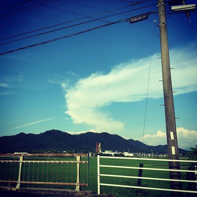ステキな横顔のひと。#イマソラ #mysky #sky #cloud #fine #blue #summer