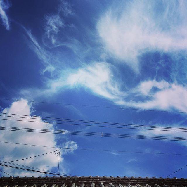 毎日暑くて死にそうです。#暑 #イマソラ #mysky #sky #blue #fine #cloud #summer