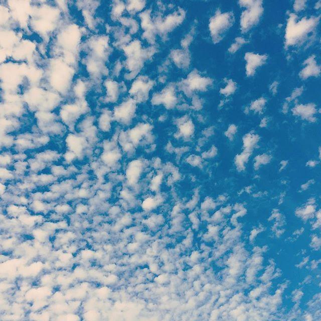 秋ね。むにゃむにゃ。#イマソラ #mysky #sky #cloud #fine #autumn #秋 #ねむい
