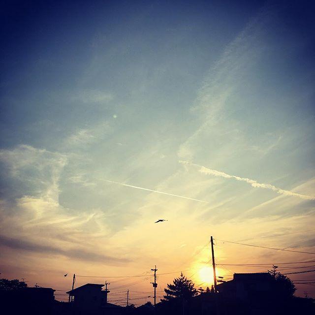 今日は飛行機雲がいっぱい!熊本では、おなじみの蚊が発生して、早速刺されました。気持ちのいい夕空です。明日も良き日でありますよう。#イマソラ #mysky #sky #sunset #fine #contrail #jetstream #vaportrail #airplane #clouds #sun #town #bird #shadow #shape #spring #kumamoto #japan #2016