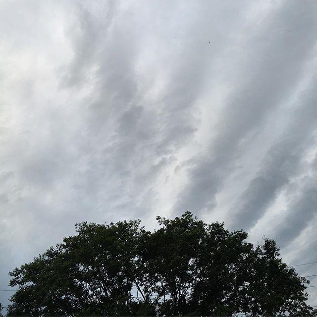 なみなみ雲。今日は忙しくてダウン気味です。夕方だけどまだ明るい。だいぶ日も長くなりました。今日も無事終わりました。また明日。#イマソラ #mysky #sky #cloudy #clouds #tree #evening #may