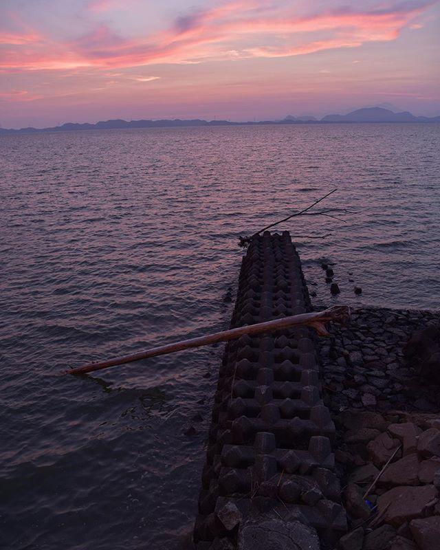 どんどん日の入りがはやくなってゆく。いつもよりはやく出たのに、夕日には間に合わなかった。余分にうろうろして、やはり海に来てしまった。今日は満ちている。少し怖い夕方。またあした。#イマソラ #mysky #sky #sunset #fine #hotday #sea #夕暮れ #海 #紫 #summer #august